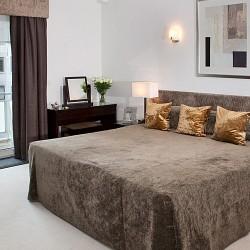 1 bedroom deluxe - park view