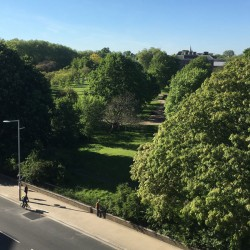 view to kensington palace & gardens