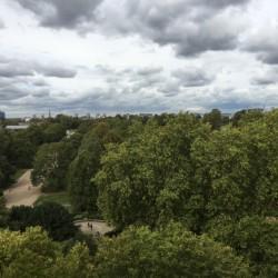 palace gate apartments, kensington, view